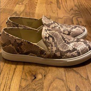 Snake skin Steve Madden slip-ons